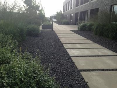 Krachtige tuin met duidelijke lijnen
